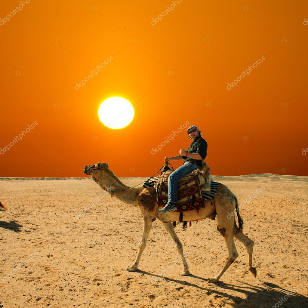 In the summer holiday on a camel ride  Stock Photo #11451931
