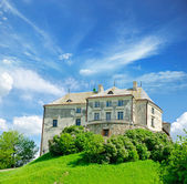 Olesko Castle — Stock Photo