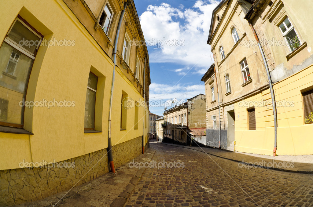 Cityscape. tourist and historic center of Lviv ( Ukraine )  Stock Photo #11251342