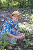 La mujer feliz crece verduras — Foto de Stock