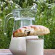 Fresh milk with appetizing ruddy pies — Foto Stock #11395516