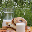 Fresh milk with appetizing ruddy pies — Stock Photo