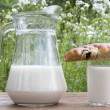 Fresh milk with appetizing ruddy pies - Stock Photo