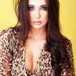 Seductive young lady in leopard print outfit — Stock Photo #11349746