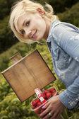 Beautiful blonde woman picking strawberries — Stock Photo