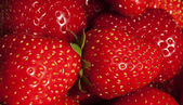 Background of luscious ripe red strawberries — Stock Photo