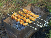 Shashlik. — Stock Photo