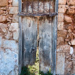 Foto de Stock  : Old door.