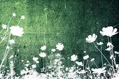 Streszczenie kwiat — Zdjęcie stockowe