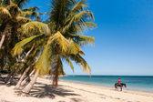 Skoczek na plaży — Zdjęcie stockowe