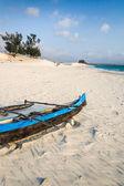 Dunes and wild beach — Stock Photo