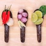 Spicy Thai food ingredients — Stock Photo