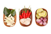 Spicy Thai food ingredients — Stock Photo