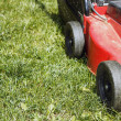 Detail of lawnmower on green grass — Stock Photo