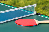 Small child table tennis — Stock Photo