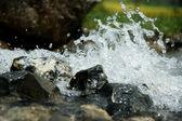 Der Bach - The brook — Stock Photo