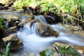 Der rauschende Bach - The rushing brook — Stock Photo