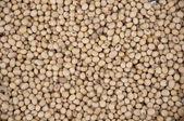 Raw soybean texture — Stock Photo