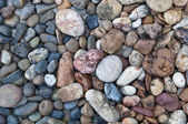 Color circle stone background — Stock Photo