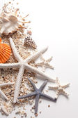 Seashells and starfish over white — Stock Photo
