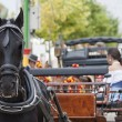 Andalusian carriage — Stock Photo