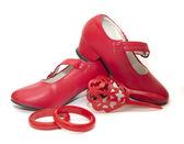 Accessorio di flamenco — Foto Stock