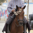 Stock Photo: Typical Andalusihorseman