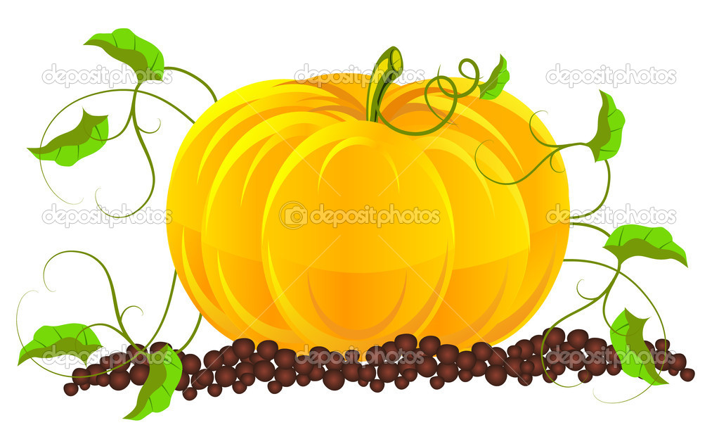 Pumpkins grow in a garden — Stock Vector #11389389