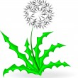 Dandelion, over white — Stock Vector