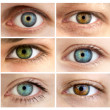 Set of 6 Real Different Open Eyes / Huge Size — Stock Photo #12004013