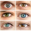 Set of 6 Real Different Open Eyes / Huge Size — Stock Photo