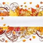 Autumn seasons card, vector illustration — Stock Vector