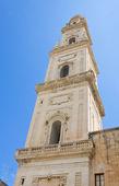 大教堂的塔。拉察。普利亚大区。意大利. — 图库照片