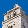 Cathedral of Barletta. Puglia. Italy. — Stockfoto