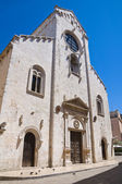 Katedrála barletta. puglia. itálie. — Stock fotografie