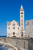 Katedra w trani. puglia. włochy. — Zdjęcie stockowe