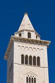 Kathedraal van trani. Puglia. Italië. — Stockfoto