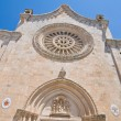 Cathedral of Ostuni. Puglia. Italy. — Foto de Stock
