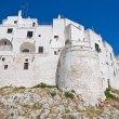 Stock Photo: Fortified walls. Ostuni. Puglia. Italy.