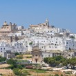 Stock Photo: Panoramic view of Ostuni. Puglia. Italy.