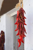 Red Chili Peppers hanging outdoor. — Stock Photo