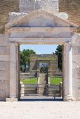 Amfiteatr lucera. puglia. włochy. — Zdjęcie stockowe