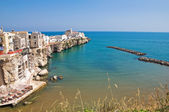 Panoramic view of Vieste. Puglia. Italy. — Stock Photo