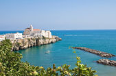 Panoramic view of Vieste. Puglia. Italy. — Foto de Stock
