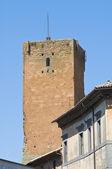 Polidori 塔。奥维多。翁布里亚。意大利. — 图库照片