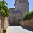 Tower of Matilde of Canossa. Tarquinia. Lazio. Italy. - Stockfoto