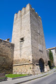 Dante's tower. Tarquinia. Lazio. Italy. — Stock Photo