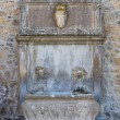 Monumental fountain. Tuscania. Lazio. Italy. — Stock Photo #12182057