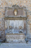 Monumental fountain. Tuscania. Lazio. Italy. — Stock Photo