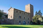 Tower of Lavello. Tuscania. Lazio. Italy. — Stockfoto